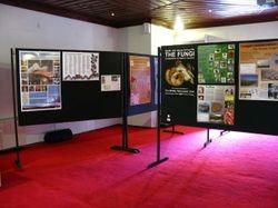Poster presentation at 3rd International Congress on Fungal Conservation, Turkey, Nov 2013.