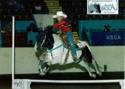 WSCA Championship Show - Jumping Figure 8