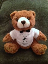 "Teddy Bears, Plush. - ""I SLEPT LIKE A BEAR AT THE ELEMENT"" - 9"" Tall. Makes a special gift!"