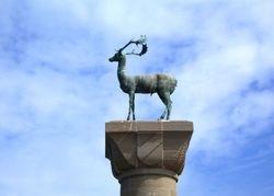 The Deear Bronze