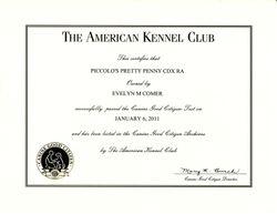 Penny CGC certificate
