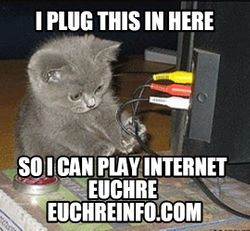 I plug this in here so I can play internet Euchre.