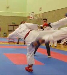 Sensei Kick