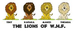 THE LIONS OF WHF