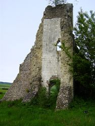 The ancient ruin