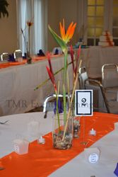 Center pieces and numbers