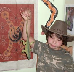 A lizard discovered in the Australian outback!