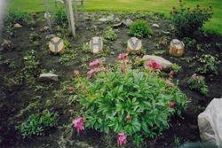 Yah's flowerbed