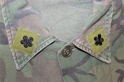 9 ARVN Inf. Bn. Officer: