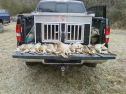 HUNT IN SOUTH MONTGOMERY