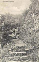 JOSEFINELUST 1902