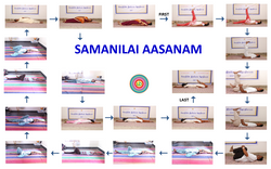 Samanilai Aasanam