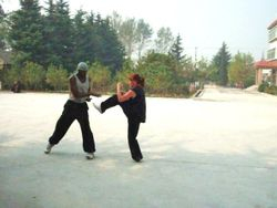 Shaolin Applications Class 2