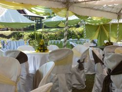 Wedding Decorations - Nakuru