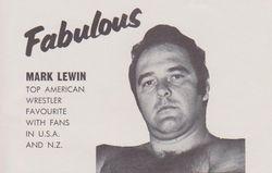 Mark Lewin