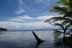 Bocas del Toro, Panama 12