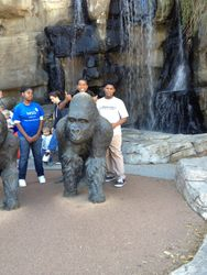 Youth Day At The Omaha Zoo