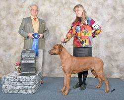 Hunter  Grand Champion  Feb 2017
