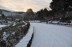 Chosun Uni