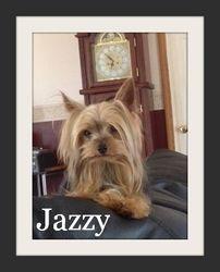 """Jazzy"""