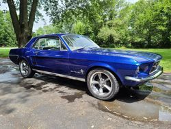 29.67 Ford Mustang