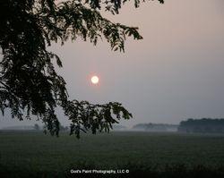 Sun Rising Through Fog