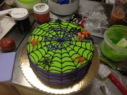 Spider Web Cool Color cake