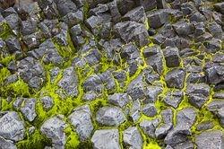 wier tussen basalt