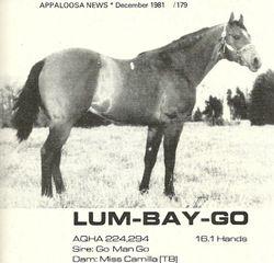 Lum Bay Go