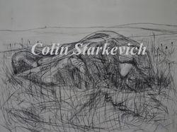"Erratic Near Bow Island (36 by 48"" mixed media on canvas)"