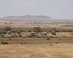 Arusha-Tarangire