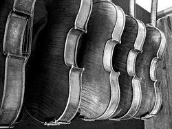 Fiddle Maker-BW