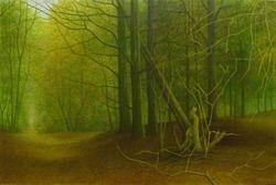 Lichtval 2008 (A)