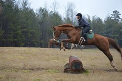 Schooling a student's mare XC
