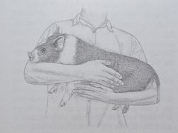 Proper way to hold your pig