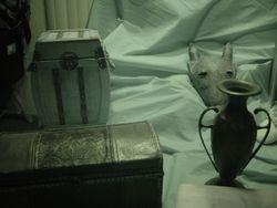 Items under night vision