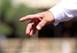 Directing Hand