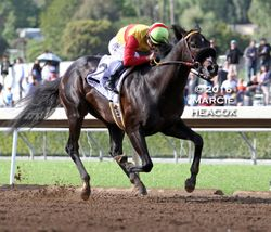 Danzing Candy Wins the San Felipe
