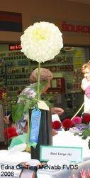 FVDS Show 2006-Edna C.