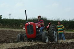 Massey Ferguson 35 ploughing