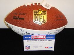 ST. LOUIS RAMS - 2010 TEAM SIGNED PANEL BALL