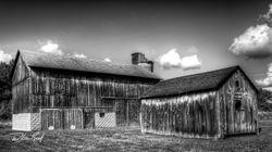 Centennial Farm In Black And White