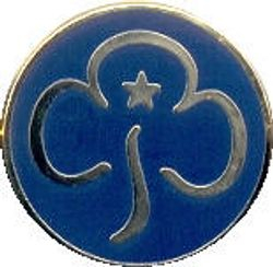 Current Guider Promise Badge