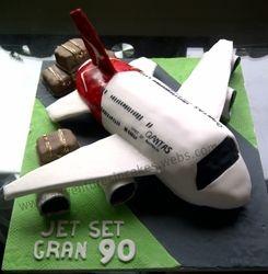 Qantus Airplane Cake the suitcases are Gluten Free