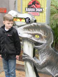 Riley and the Raptor