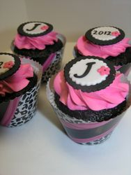 Hot Pink Leopard Cupcakes