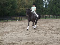 Jo Crawford riding her Level 5 test