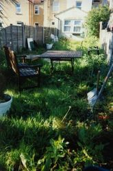 The garden before we started, full of weeds and with broken down fencing