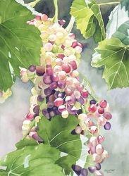 Glimmering Grapes