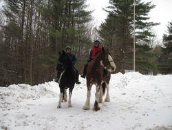 Snow Travelers February 2011